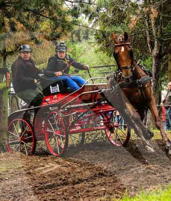 Menwedstrijd in het Noord-Limburgse Ysselsteyn
