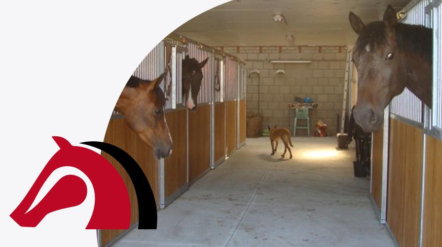 accomodatie - luxe stallen - vdb stables